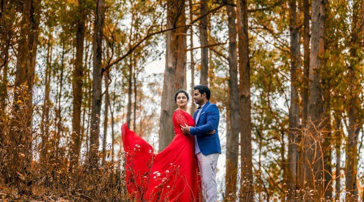 Dilip & Niveditha